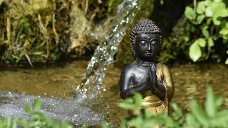 🌱Week-end immersion Yoga et initiation massage thaï au coeur de la Dordogne en pension complète